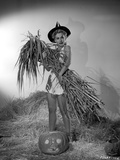 Eva Gabor on a Dress Carrying Dried Leaves and Twigs Photo by  Movie Star News