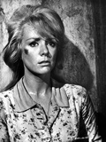 Inger Stevens Leaning on a Wall in Printed Dress Photo by  Movie Star News
