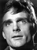 Keir Dullea in Fur Coat Photo by  Movie Star News