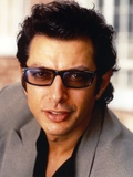 Jeff Goldblum Posed in Grey Linen Suit Photo by  Movie Star News