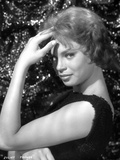Juliet Prowse Posed Side View in Black Shirt Photo af Movie Star News