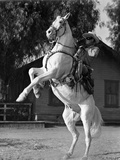 Lone Ranger Riding a Horse, wearing a Cowboy Attire Photo by  Movie Star News