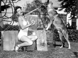 Marjorie Lord on a Swimsuit with a Dog Photo by  Movie Star News