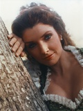 Morgan Brittany Close Up Portrait Under the Tree Photo by  Movie Star News