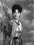 Suzanne Pleshette wearing a Dress and posed with Ferns Photo af Movie Star News