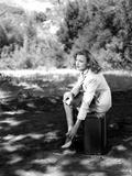Virginia Grey sitting on a Chair Portrait Photo by  Movie Star News