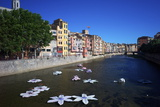 River Onyar During the Flower Festival, Girona, Catalonia, Spain Photographic Print by Rob Cousins