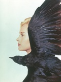 Tippi Hedren Facing Side View with Crow Portrait Photo by  Movie Star News