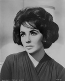 Elizabeth Taylor Looking Away in Blouse Photo by  Movie Star News