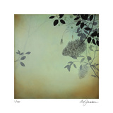Smoke Bush IV Limited Edition by Ivy Jacobsen