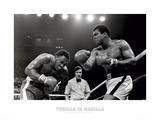 Muhammad Ali: combate en Manila Pósters