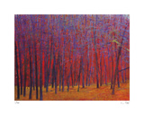 Deep Red Forest Limited Edition by Ken Elliot