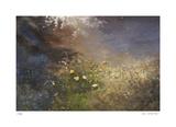 River Jewels Édition limitée par Jan Wagstaff