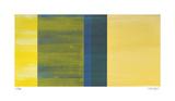 Color Field 4 Spesialversjon av Teresa Camozzi