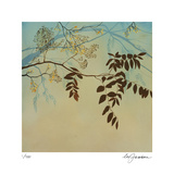 Smoke Bush III Limited Edition by Ivy Jacobsen