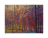 Orange and Red Woods 2 Limited Edition by Ken Elliot