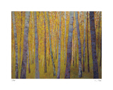 Forest Verticals Limited Edition by Ken Elliot