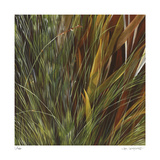 Flax and Fauna Limited Edition by Jan Wagstaff