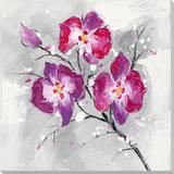 Bright Blossoms in Winter Kunstdrucke