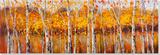 Autumn Aspens Posters