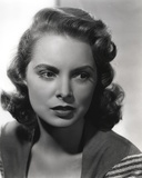 Janet Leigh Posed in Grey Linen V-Neck Blouse with Stripe Sleeves Photo by  Movie Star News