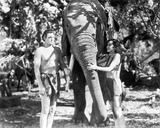 Johnny Weissmuller Petting an Elephant with a Woman in a Classic Movie Scene Photo by  Movie Star News
