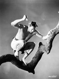 Johnny Weissmuller On Top of a Tree Branch Holding a Sharp Object in a Classic Movie Scene Photo by  Movie Star News