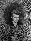 James Dean Posed in Black V-Neck Long Sleeve Cotton Shirt Photo by  Movie Star News
