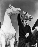 James Dean Posed in Black Long Sleeve V-Neck Shirt with Right Hand Holding on a White Horse Figure Photo by  Movie Star News