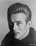 James Dean Portrait in Black Knitted Round Neck Cotton Shirt on White Background Photo by  Movie Star News
