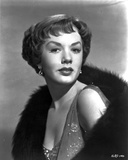 Piper Laurie Posed in Classic Portrait wearing Dress with Black Fur Scarf Photo by  Movie Star News