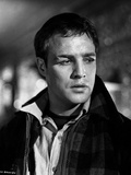 Marlon Brando Movie Scene with a Wounded Man in Black and White Photo by  Movie Star News