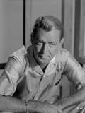 Alan Ladd sitting and Facing Right in Black and White Portrait Photo by  Movie Star News