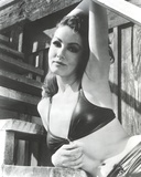 Julie Newmar Leaning on Stairs in Lingerie Black and White Photo by  Movie Star News