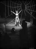 Anne Francis on Big Cobweb in Black and White Portrait Photo by  Movie Star News