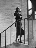 Elizabeth Taylor Climbing the Stairs Classic Portrait Photo by  Movie Star News