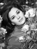 Barbara Parkins Classic Close Up Portrait with Flowers Photo af Movie Star News