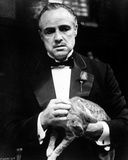 Marlon-GF Brando in Black Coat with Bowtie Holding a Cat Foto von  Movie Star News