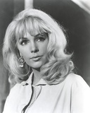 Stella Stevens Posed in Blouse Classic Portrait Photo by  Movie Star News
