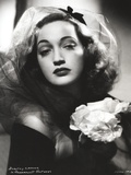 Dorothy Lamour Portrait in Classic with Netted Shawl Photo by  Movie Star News