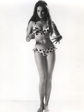 Julie Newmar in Lingerie With White Background Photo by  Movie Star News