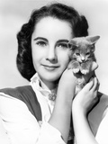 Elizabeth Taylor Posed with Cat Classic Portrait Photo by  Movie Star News