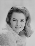 Angie Dickinson in Sweater Classic Close Up Portrait Photo by  Movie Star News