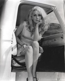 Stella Stevens Posed in Car Classic Portrait Photo by  Movie Star News