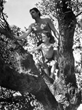 Johnny Weissmuller Climbing Tree in Black and White Photo by  Movie Star News
