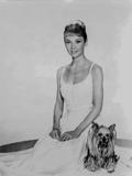 Audrey Hepburn in a Summer Dress with her Dog Photo by  Movie Star News