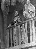 Elizabeth Taylor Posed in Classic Portrait Photo by Bob Penn
