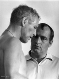 Paul Newman Talking Strategy Black and White Photo by  Movie Star News