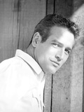 Paul Newman Posed in Polo Black and White Photo by  Movie Star News