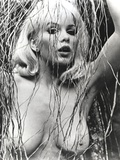 Stella Stevens Nude Portrait in Black and White Photo by  Movie Star News